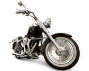 エスクラインのバイク